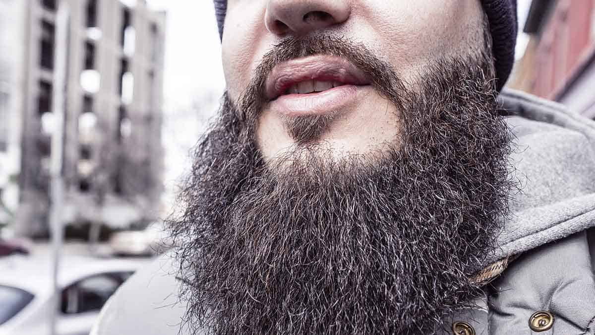 Best Beard Growth Products