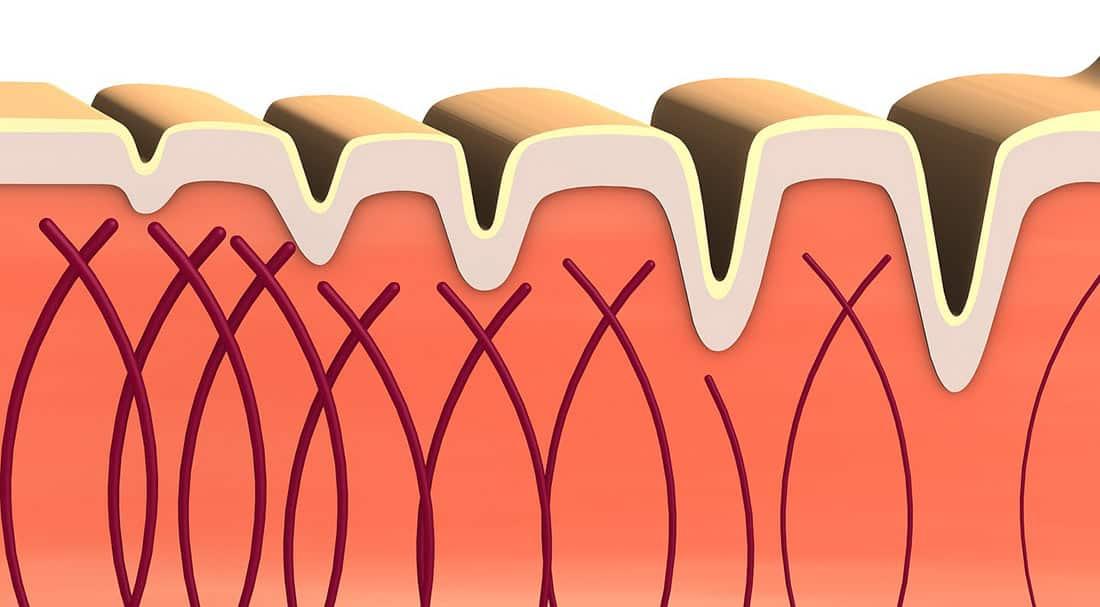 Importance of Collagen Retention