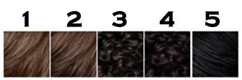 Clairol Beard dye color options