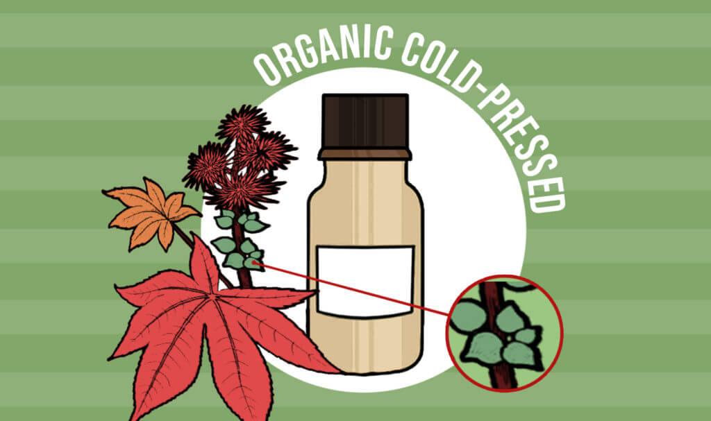 Organic Cold-Pressed Castor Oil