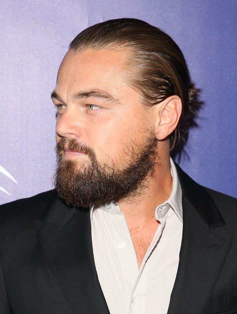 the hollywoodian beard